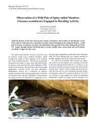 Varanus acanthurus - International Varanid Interest Group