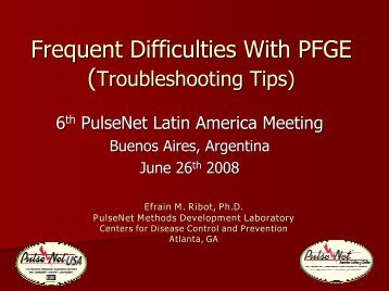 Frequent Difficulties With PFGE - Inocuidade de Alimentos