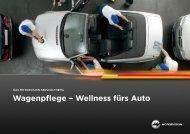 Wagenpflege – Wellness fürs Auto - MotorVision