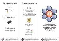 Projekt_SAFeR_Kurzbeschreibung - Universität Paderborn