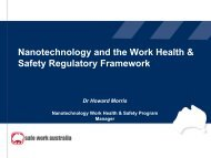Nanotechnology and the work health & safety regulatory framework