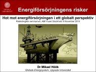Mikael Hööks presentation - Riskkollegiet