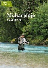 v Sloveniji