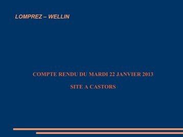 lomprez – wellin compte rendu du mardi 22 janvier 2013 site a castors