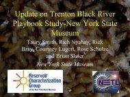 Update on Trenton Black River Playbook Study-New York State ...