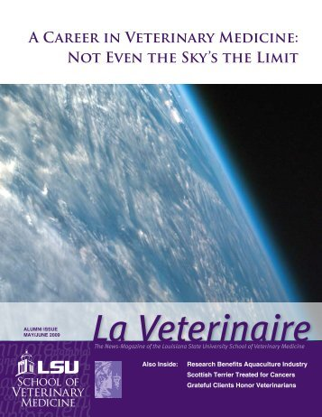 A Career in Veterinary Medicine: Not Even the Sky's the Limit