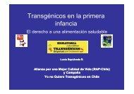 Alimentos transgénicos en la primera infancia - Chile Crece Contigo