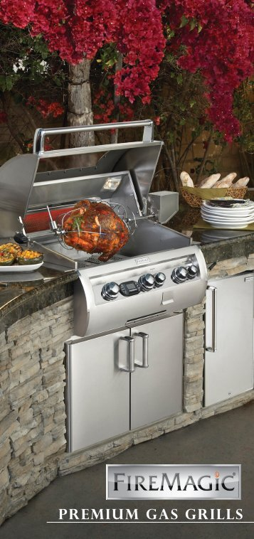 PREMIUM Gas grills - RH Peterson Co.