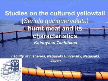 Characteristics of burnt meat in yellowtail Seriola quinqueradiata
