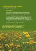 Arable plants in Scotland - Plantlife - Page 3
