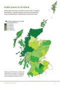 Arable plants in Scotland - Plantlife - Page 7