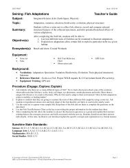Seining: Fish Adaptations Teacher's Guide - Florida Department of ...