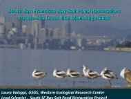 South San Francisco Bay Salt Pond Restoration