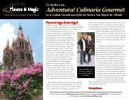 Adventura! Culinaria Gourmet - Flavors and Magic