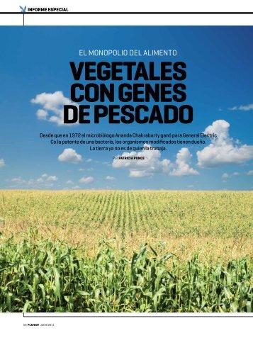 vegetales con genes de Pescado - Sin Maíz no hay País
