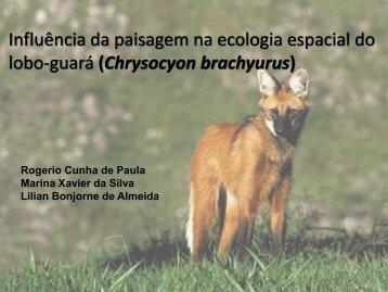 Influência da paisagem na ecologia espacial do lobo-guará ...