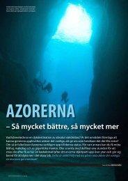 AZORERNA – Så mycket bättre, så mycket mer - Visit Azores