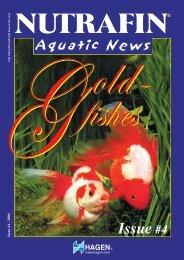 Aquatic plants - cultivation in the Aquarium