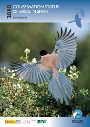Conservation status of bird in Spain - SEO/BirdLife