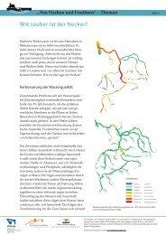 Wie sauber ist der Neckar? - Von Fischen und Frachtern