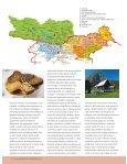 Gastronomska popotovanja od Gorenjske prek avstrijske Koro{ke do ... - Page 4