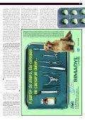 Filtración renal - argos - Page 5