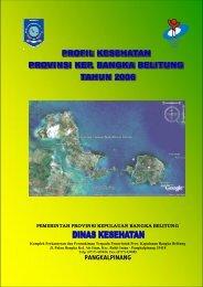 prov babel 2006.pdf
