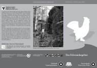 Felswandergebiet neu... - Nationalpark Bayerischer Wald