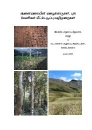 Rainforest and grassland restoration Tamil booklet - Nature ...