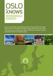 RENEWABLE ENERGY - Menon - Business Economics