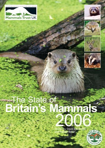 State of Britain's Mammals 2006 - People's Trust for Endangered ...