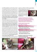 Dicembre 2012 - ATRA - Page 5