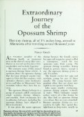 501 Extraordinary Journey of the Opossum Shrimp - webapps8 - Page 2