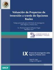 Valuación de Proyectos de Inversión a través de Opciones ... - CNSF