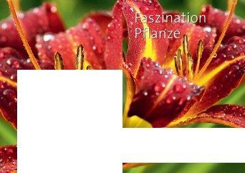 Faszination Pflanze - Garten Center Säriswil
