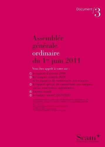 RA SCAM France 2010 (synthèse) - Sacd