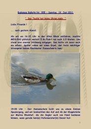 Bodensee Bulletin Nr. 055 - Sonntag, 19. Juni 2011 - big-max-web.de
