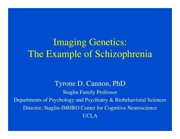 Imaging Genetics - Brainmapping.ORG