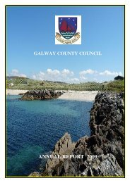 ANNUAL REPORT 2009 - Galway County Council