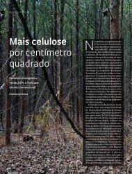 Mais celulose por centímetro quadrado - Revista Pesquisa FAPESP