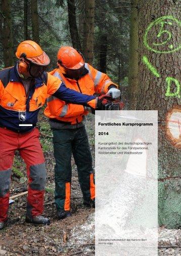 Forstliches Kursprogramm BE 2013 - Volkswirtschaftsdirektion ...