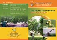 Paecilomyces Fumosoroseus - Proyecto Especial Chavimochic