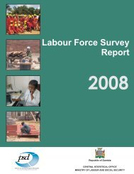 2008 Labourforce Survey Report - Central Statistical Office of Zambia