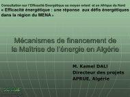 Mécanismes de financement de la maîtrise de l ... - Euromedina
