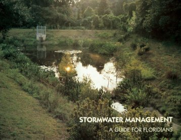 Stormwater Management: A Guide for Floridians - Florida ...