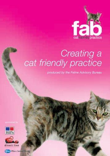 Cat Friendly Practice 1 - SAVT