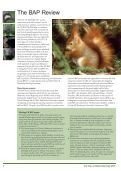 State of Britain's Mammals 2005 - People's Trust for Endangered ... - Page 4