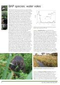 State of Britain's Mammals 2005 - People's Trust for Endangered ... - Page 6