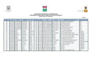 PVehicular - Gobierno del Estado de Morelos
