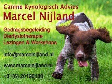 Marcel Nijland - Animal Event